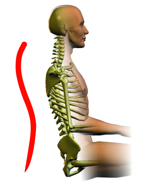 upright-spine-thumbnail.jpg